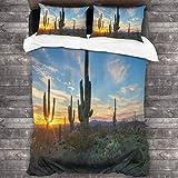 kThrones Set Copripiumino 3 Pezzi,Il Sole tramonta tra Le Piante di Cactus con Design Selvaggio Paesaggio di mezzogiorno di Spine dorsali- Copripiumino e 2 Federa (Super 220x260cm)