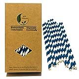 Blu navy a righe cannucce di carta, 100count Recyslable Paper box, Aegean blu e bianco a righe