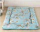 ZY&DD Giapponese Tatami Materasso,Thick Materasso,Pieghevoli Dormire Pad,Tatami da Terra Morbidi futon, Dormire Pad-H 90x200cm(35x79inch)
