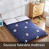 LNDDP Materasso futon Antiscivolo Pieghevole Seasons, Materasso Portatile Tatami da Terra per dormitorio Domestico da Esterno-b 90x200 cm (35x79 Pollici)