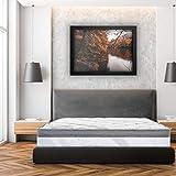 Luxury Letterie | Materasso ViscoPlus 160 x 200 cm | Memory Foam adattabile | Sistema Schiuma HR | 10 zone di comfort | 26 cm (+/-2 cm) | Tutte le dimensioni