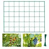 Halcyerdu Rete per Piante rampicanti, Rete da Giardino, per Piante rampicanti, Vegetali e Frutta Rete Dimensioni: 1,8 x 2,7 m