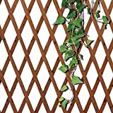 BAKAJI Traliccio Rete per Piante Rampicanti in Legno Naturale Scuro Estendibile Fino a 180 cm Reticolo da Parete Apertura a Fisarmonica Decorazione Giardino Giardinaggio (30 x 180 cm)